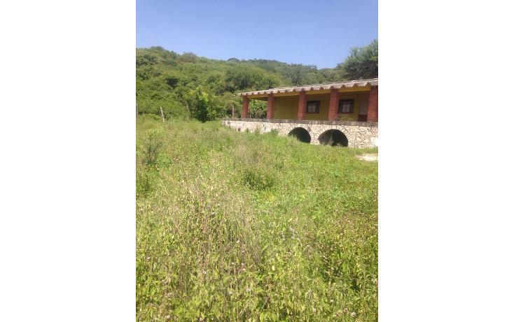 Foto de rancho en venta en  , alchichica, izúcar de matamoros, puebla, 1466383 No. 06