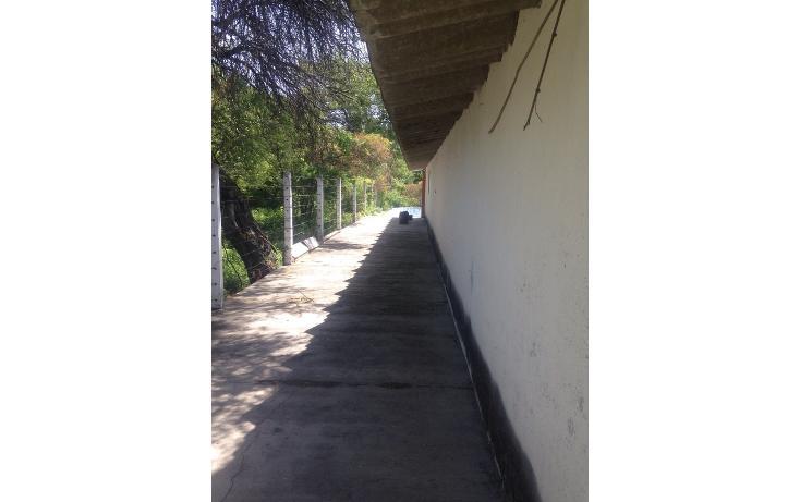 Foto de rancho en venta en  , alchichica, izúcar de matamoros, puebla, 1466383 No. 07