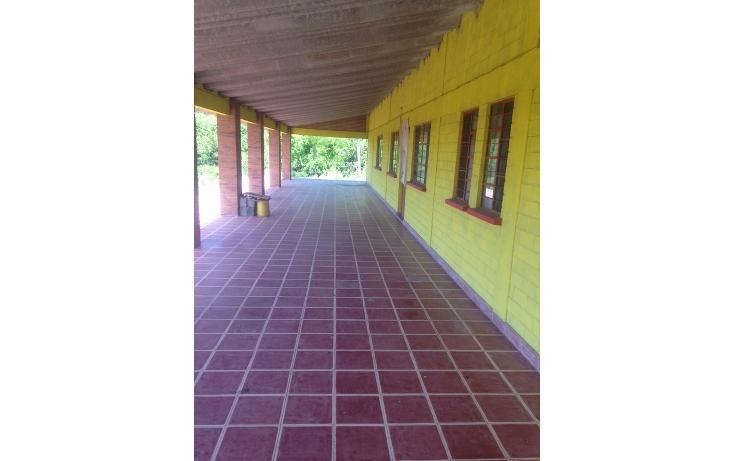 Foto de rancho en venta en  , alchichica, izúcar de matamoros, puebla, 1466383 No. 09