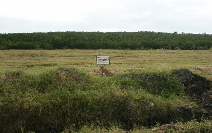 Foto de terreno habitacional en venta en  , aldama, aldama, tamaulipas, 1142079 No. 01