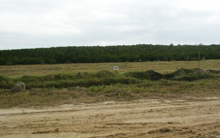Foto de terreno habitacional en venta en  , aldama, aldama, tamaulipas, 1142079 No. 02