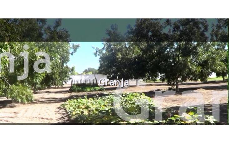 Foto de rancho en venta en  , aldama centro, aldama, chihuahua, 949499 No. 02