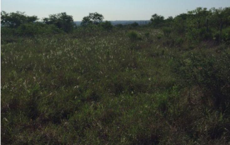 Foto de terreno habitacional en venta en, alfonso martinez dominguez, allende, nuevo león, 1382953 no 03
