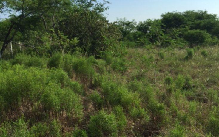 Foto de terreno habitacional en venta en, alfonso martinez dominguez, allende, nuevo león, 1382953 no 05