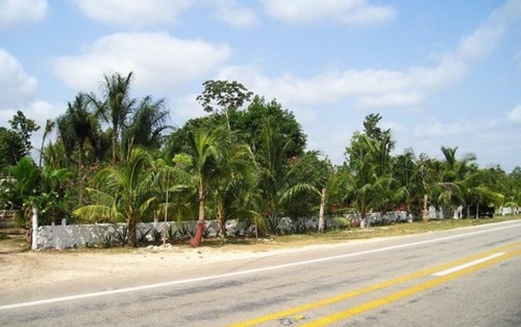 Foto de terreno comercial en venta en  , alfredo v bonfil, benito ju?rez, quintana roo, 1046649 No. 03
