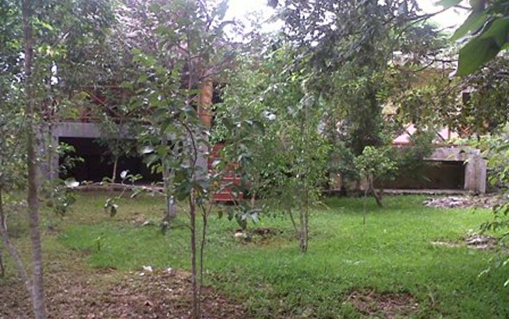 Foto de casa en venta en  , alfredo v bonfil, benito juárez, quintana roo, 1061915 No. 14