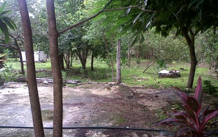 Foto de casa en venta en  , alfredo v bonfil, benito juárez, quintana roo, 1061915 No. 17