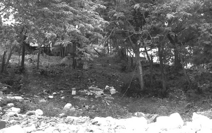 Foto de terreno habitacional en venta en  , alfredo v bonfil, benito ju?rez, quintana roo, 1069203 No. 02