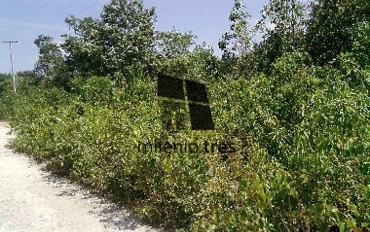 Foto de terreno habitacional en venta en  , alfredo v bonfil, benito juárez, quintana roo, 1077239 No. 02