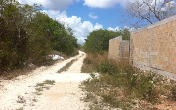 Foto de terreno habitacional en venta en  , alfredo v bonfil, benito juárez, quintana roo, 1130723 No. 02
