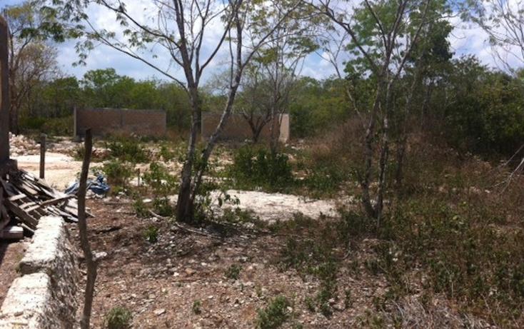 Foto de terreno habitacional en venta en  , alfredo v bonfil, benito juárez, quintana roo, 1130723 No. 05