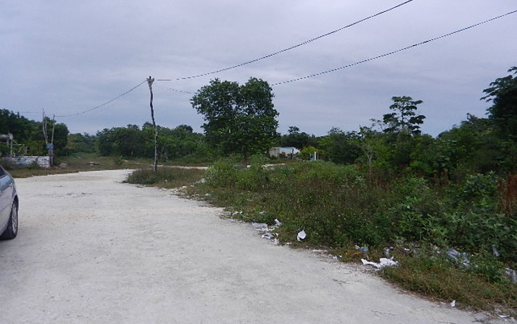 Foto de terreno comercial en venta en  , alfredo v bonfil, benito juárez, quintana roo, 1193079 No. 05