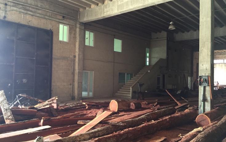Foto de nave industrial en venta en  , alfredo v bonfil, benito juárez, quintana roo, 1203857 No. 08