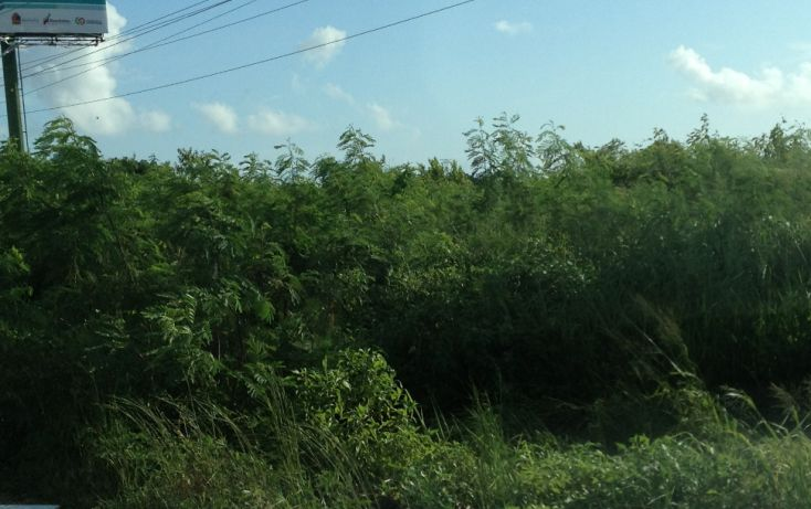 Foto de terreno comercial en venta en, alfredo v bonfil, benito juárez, quintana roo, 1392337 no 07