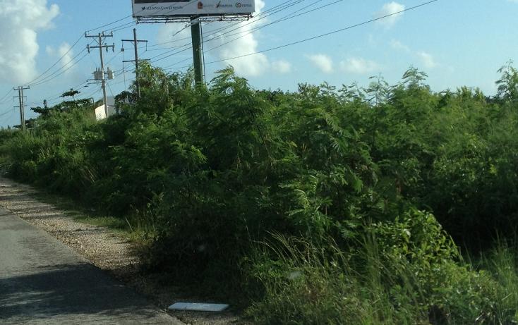 Foto de terreno comercial en venta en  , alfredo v bonfil, benito ju?rez, quintana roo, 1392337 No. 08