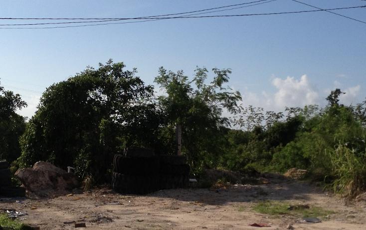 Foto de terreno comercial en venta en  , alfredo v bonfil, benito ju?rez, quintana roo, 1392337 No. 10