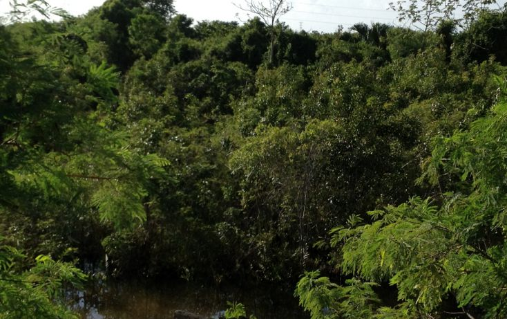 Foto de terreno comercial en venta en, alfredo v bonfil, benito juárez, quintana roo, 1392337 no 12
