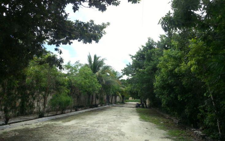 Foto de terreno habitacional en venta en, alfredo v bonfil, benito juárez, quintana roo, 1435231 no 03