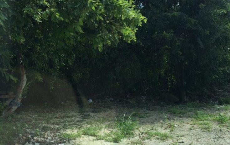 Foto de terreno habitacional en venta en, alfredo v bonfil, benito juárez, quintana roo, 1446125 no 03