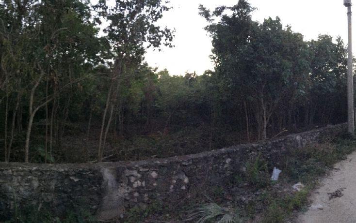 Foto de terreno habitacional en venta en, alfredo v bonfil, benito juárez, quintana roo, 1459519 no 02