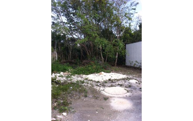 Foto de terreno habitacional en venta en  , alfredo v bonfil, benito ju?rez, quintana roo, 1488615 No. 09