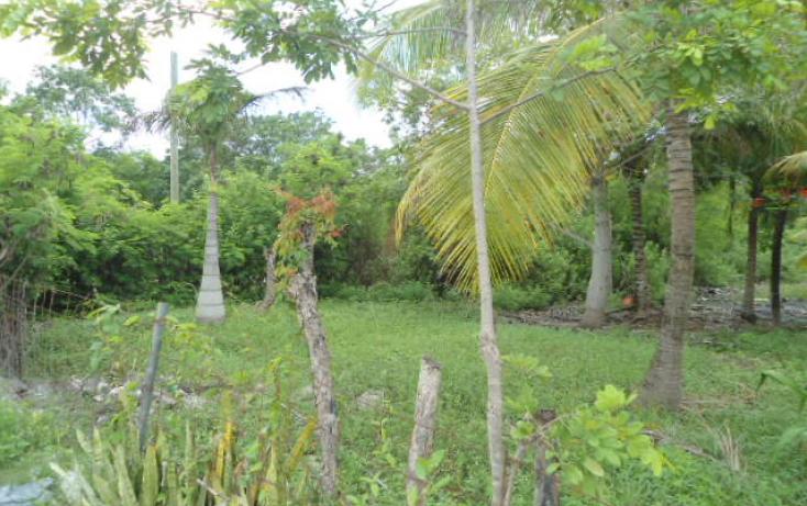 Foto de terreno comercial en venta en, alfredo v bonfil, benito juárez, quintana roo, 2017128 no 03