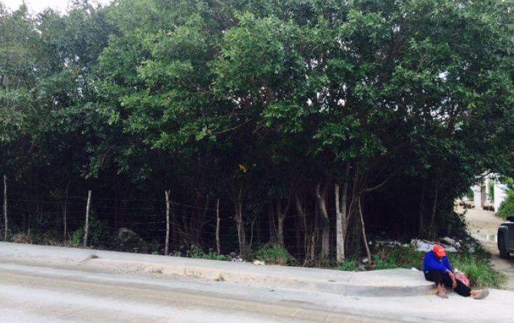Foto de terreno habitacional en venta en, alfredo v bonfil, benito juárez, quintana roo, 2038076 no 06