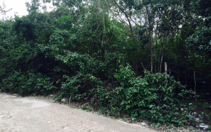 Foto de terreno habitacional en venta en, alfredo v bonfil, benito juárez, quintana roo, 2038076 no 09