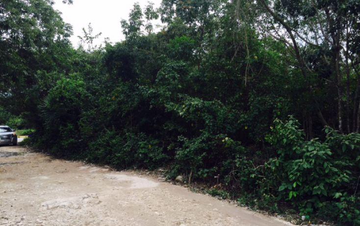 Foto de terreno habitacional en venta en, alfredo v bonfil, benito juárez, quintana roo, 2038076 no 10
