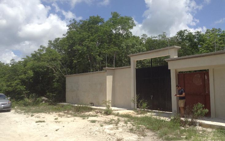 Foto de terreno habitacional en venta en  , alfredo v bonfil, benito juárez, quintana roo, 2627517 No. 05