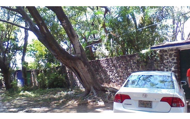 Foto de rancho en venta en  , alfredo v bonfil, jiutepec, morelos, 454903 No. 02