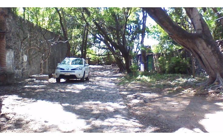 Foto de rancho en venta en  , alfredo v bonfil, jiutepec, morelos, 454903 No. 03