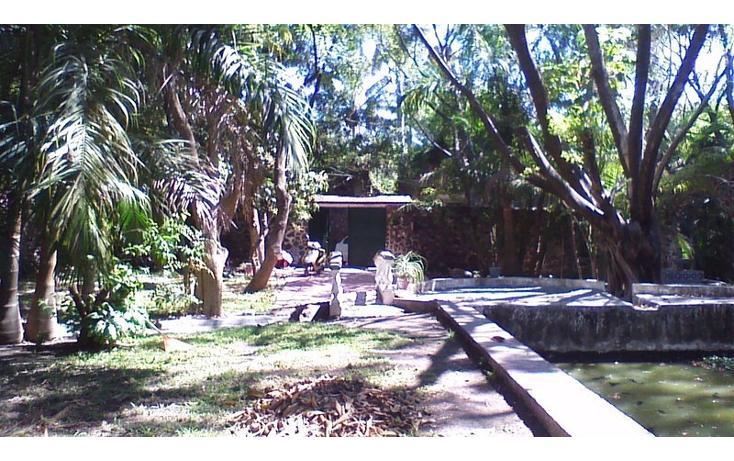 Foto de rancho en venta en  , alfredo v bonfil, jiutepec, morelos, 454903 No. 04