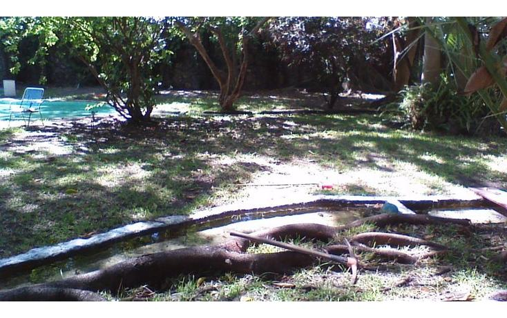 Foto de rancho en venta en  , alfredo v bonfil, jiutepec, morelos, 454903 No. 13