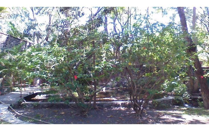 Foto de rancho en venta en  , alfredo v bonfil, jiutepec, morelos, 454903 No. 15