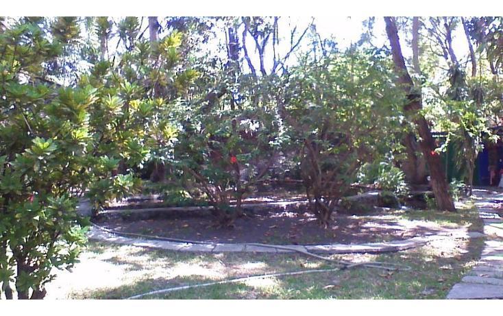 Foto de rancho en venta en  , alfredo v bonfil, jiutepec, morelos, 454903 No. 16