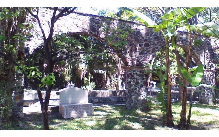 Foto de rancho en venta en  , alfredo v bonfil, jiutepec, morelos, 454903 No. 17