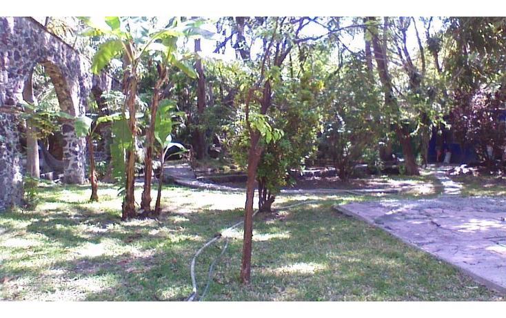Foto de rancho en venta en  , alfredo v bonfil, jiutepec, morelos, 454903 No. 18