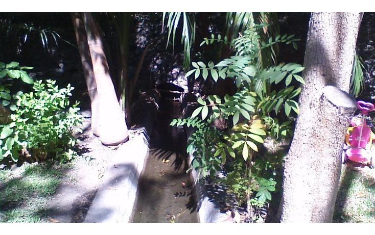 Foto de rancho en venta en  , alfredo v bonfil, jiutepec, morelos, 454903 No. 25