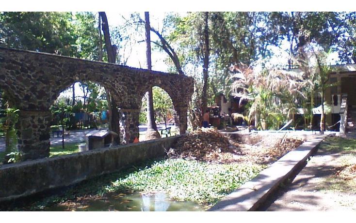 Foto de rancho en venta en  , alfredo v bonfil, jiutepec, morelos, 454903 No. 26