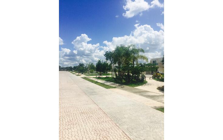 Foto de terreno habitacional en venta en  , algarrobos desarrollo residencial, m?rida, yucat?n, 1404717 No. 04