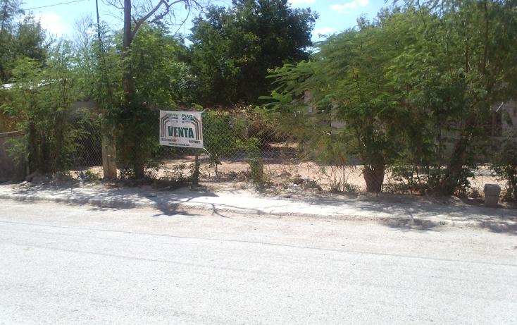 Foto de terreno habitacional en venta en  , almaguer, reynosa, tamaulipas, 1194381 No. 02