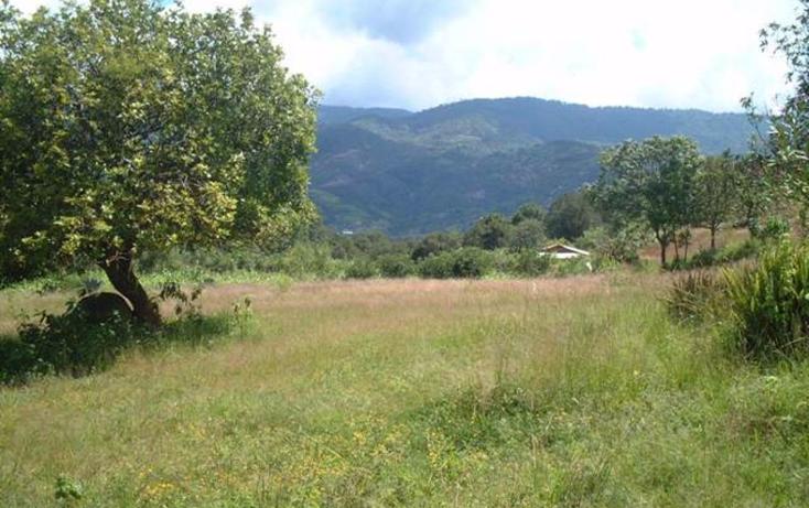 Foto de terreno habitacional en venta en  , almoloya de alquisiras, almoloya de alquisiras, méxico, 1252219 No. 02