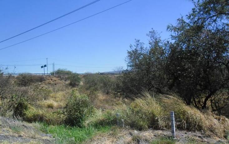 Foto de terreno habitacional en venta en  , alpuyeca, xochitepec, morelos, 1251525 No. 02