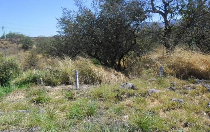 Foto de terreno habitacional en venta en  , alpuyeca, xochitepec, morelos, 1251525 No. 07