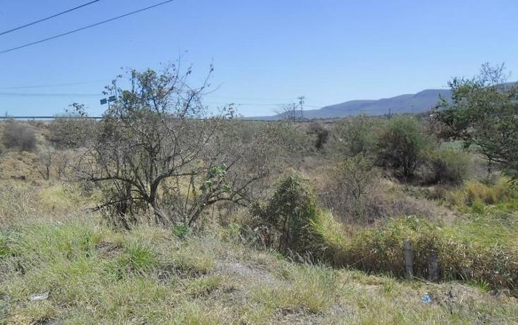 Foto de terreno habitacional en venta en  , alpuyeca, xochitepec, morelos, 1251525 No. 08