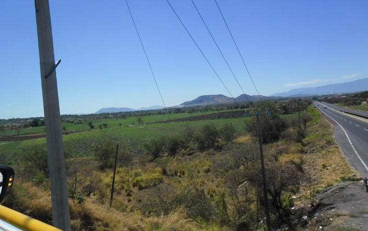 Foto de terreno habitacional en venta en  , alpuyeca, xochitepec, morelos, 1251525 No. 09