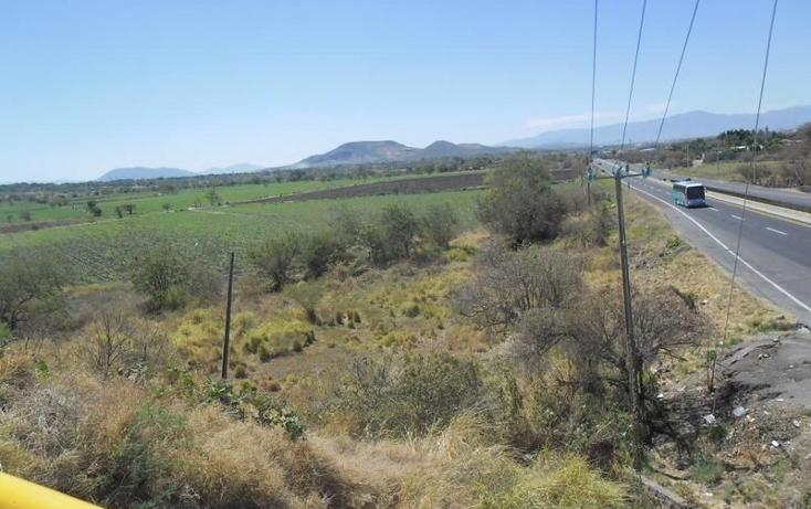 Foto de terreno habitacional en venta en  , alpuyeca, xochitepec, morelos, 1251525 No. 10