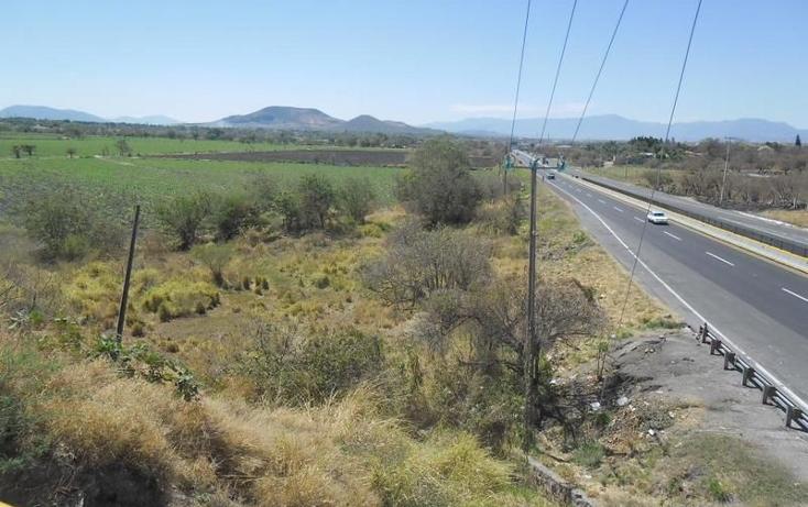 Foto de terreno habitacional en venta en  , alpuyeca, xochitepec, morelos, 1251525 No. 13