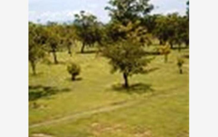 Foto de terreno habitacional en venta en  , alpuyeca, xochitepec, morelos, 1304071 No. 03